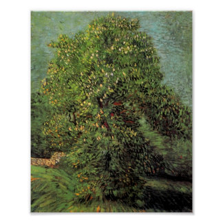 Chestnut Tree in Blossom, Van Gogh Fine Art Poster