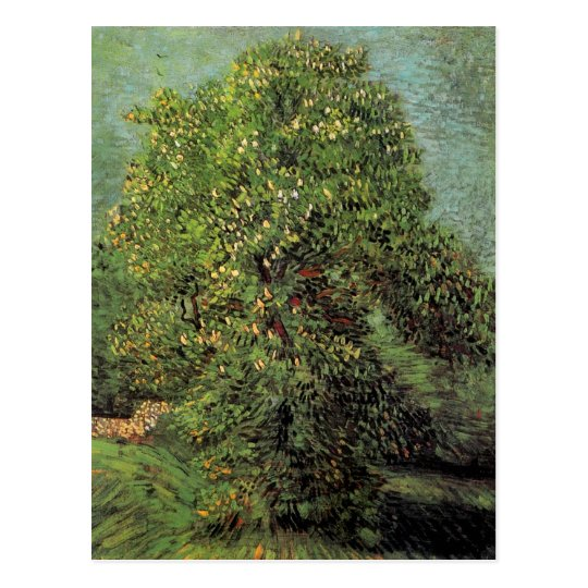 Chestnut Tree in Blossom, Vincent van Gogh Postcard
