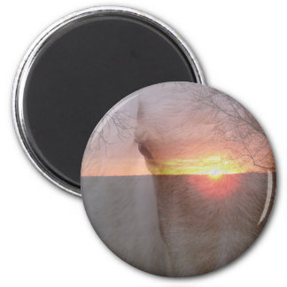 Cheval de palomino dans le lever de soleil aimants pour réfrigérateur