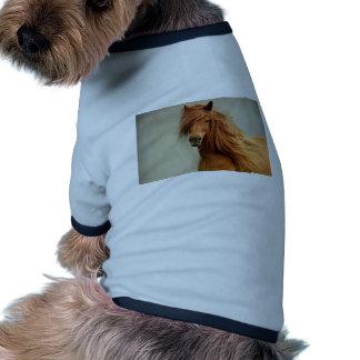 Cheval impertinent t-shirts pour toutous