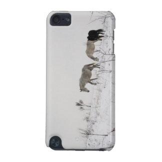 Chevaux sauvages d'hiver dans le cas de neige coque iPod touch 5G