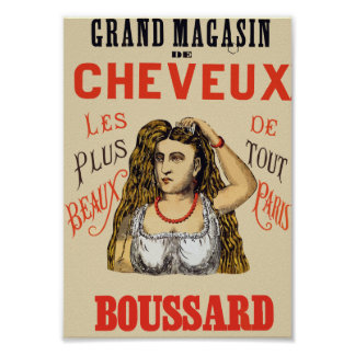 Cheveux Boussard Hair Salon Beauty Poster