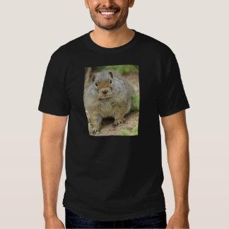 Cheville ouvrière tee-shirts