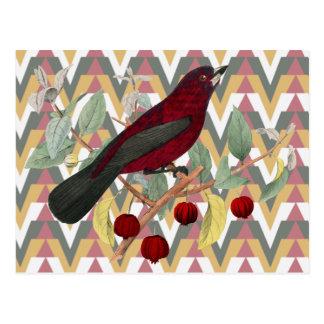 Chevron and Vintage Red Bird Postcard