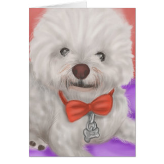 Chewie the Bichon Frise Card