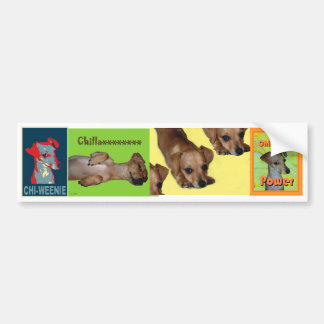 Chi-weenie Bumper Sticker
