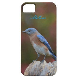Chic Bluebird Case For The iPhone 5