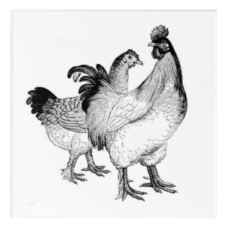 Chic Chickens! Crisp, Clean Chicken Wall Decor