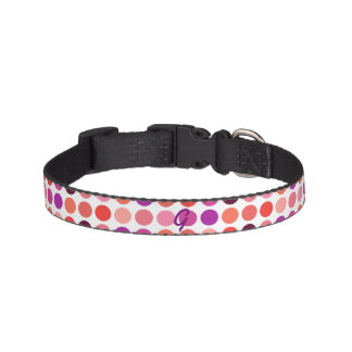 Chic colorful polka dots pattern monogram pet collar