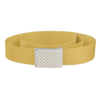 Chic Gold Colored Belt