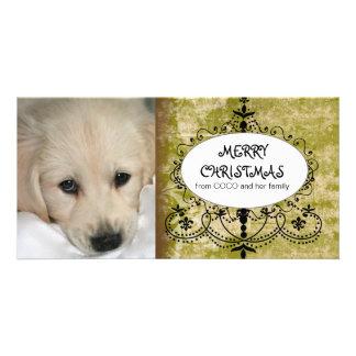 Chic Green Damask Dog Christmas Photo Card