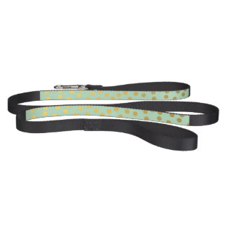 Chic Mint Gold Confetti Dots Pet Leash