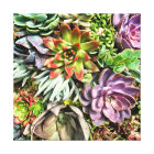 Chic Modern Colourful Succulent photo pattern Canvas Print
