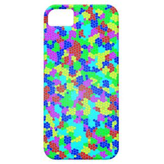Chic Stylish Multicolor Rainbow Mosaic Pattern iPhone 5 Case