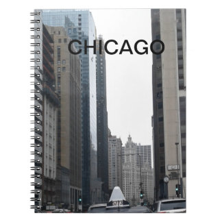 CHICAGO CITY NOTEBOOK