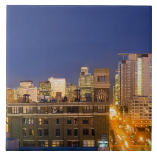 Chicago, Illinois, skyline shot from West Loop Tile