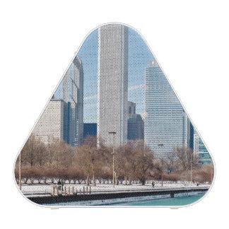 Chicago skyline across frozen Lake Michigan Speaker
