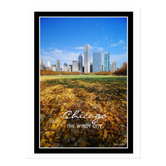 Chicago, THE WINDY CITY Postcard