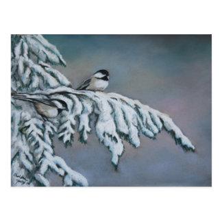 Chick-a-dees in the Snow Bird Art Postcard
