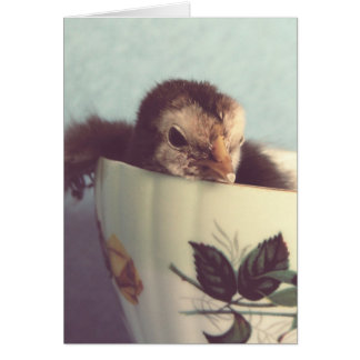 Chick in a Vintage Teacup Easter Card