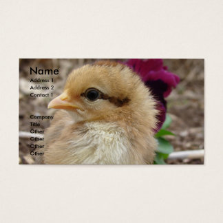 Chick in the Garden Business Card