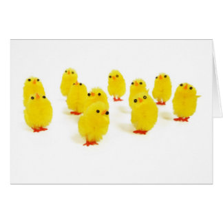 Chick magnet chillin with my peeps funny photo card