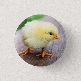 Chick Pin