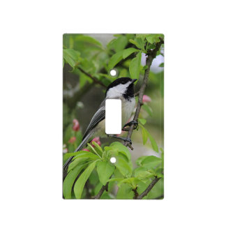 Chickadee and spring blossoms light switch cover