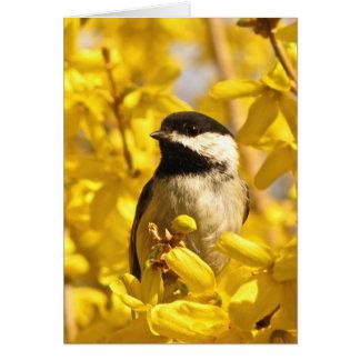Chickadee Bird in Yellow Flowers Blank Card