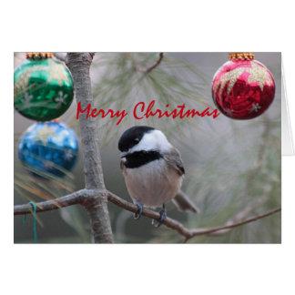Chickadee Card