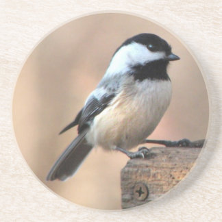 Chickadee in Golden Light Coaster