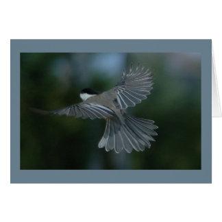 Chickadee Lift-Off From Birdhouse Card