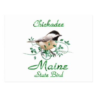 Chickadee Maine State Bird Postcard