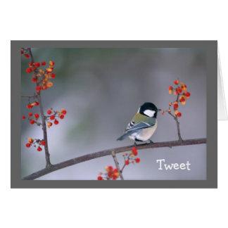 Chickadee on Bittersweet Note Card