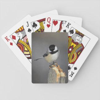 Chickadee Playing Cards
