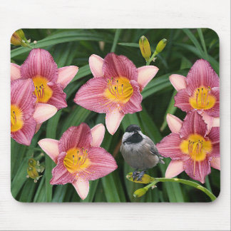 Chickadee with Pink Flowers - Mouse Pad