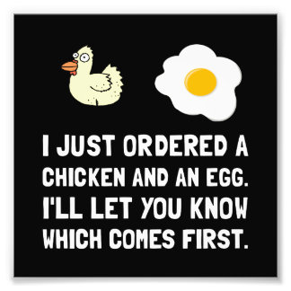 Chicken And Egg Photo Art