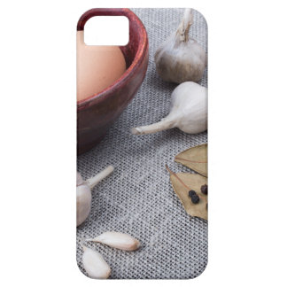 Chicken eggs and garlic and spices on the kitchen iPhone 5 case