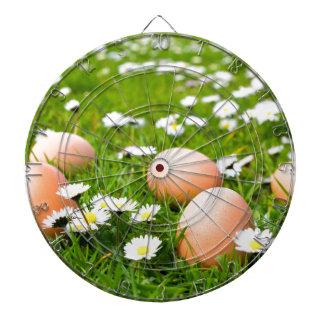 Chicken eggs in grass with daisies dartboard