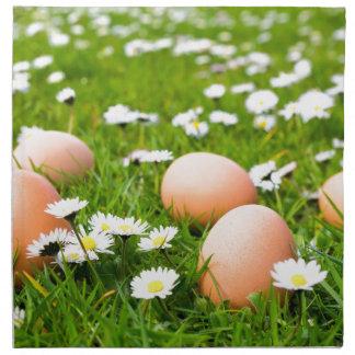Chicken eggs in grass with daisies napkin
