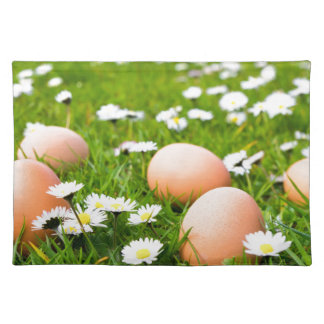 Chicken eggs in grass with daisies placemat