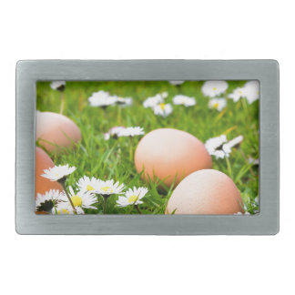 Chicken eggs in grass with daisies rectangular belt buckles