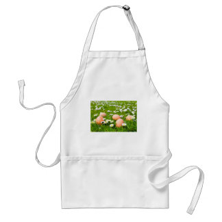 Chicken eggs in grass with daisies standard apron