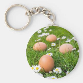 Chicken eggs in spring grass with daisies basic round button keychain