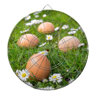 Chicken eggs in spring grass with daisies dartboard