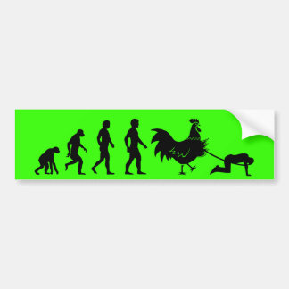Chicken evolution bumper sticker