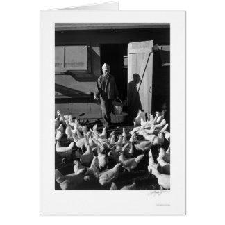 Chicken Farm Mori Nakashima 1943 Card