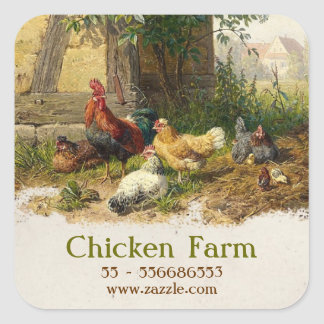 chicken farm sticker