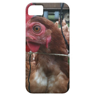 Chicken Is Watching You iPhone 5 Cover