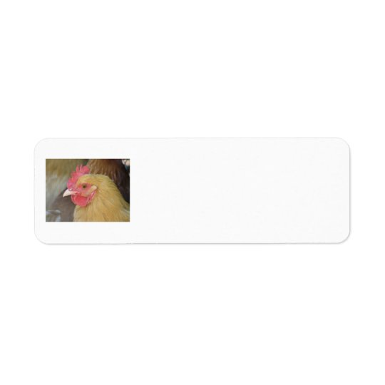Chicken Return Labels
